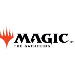 Magic the Gathering Unpainted Miniature Figure no.11 Case (6)