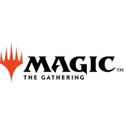 Magic the Gathering Unpainted Miniature Figure no.9 Case (6)