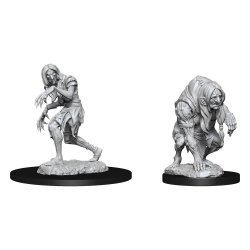 Pathfinder Battles Deep Cuts Unpainted Miniatures Annis Hag & Green Hag Case (6)