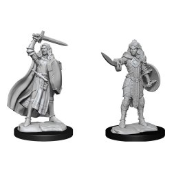 Pathfinder Battles Deep Cuts Unpainted Miniatures Human Champion Female Case (6)