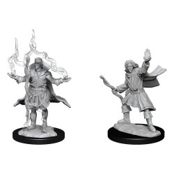 Pathfinder Battles Deep Cuts Unpainted Miniatures Elf Sorcerer Male Case (6)