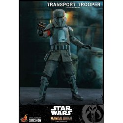 Star Wars The Mandalorian Action Figure 1/6 Transport Trooper 31 cm