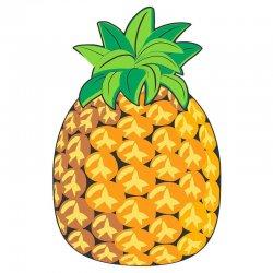 Pineapple round microfiber beach towel