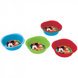 Disney Mickey bowl picnic