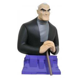 Batman Beyond Bust Bruce Wayne 15 cm