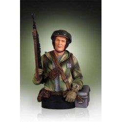 Star Wars Bust 1/6 Endor Trooper 18 cm