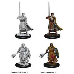 D&D Nolzur's Marvelous Miniatures Unpainted Miniatures Male Human Cleric Case (6)