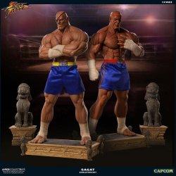 Street Fighter Statues 1/3 Sagat PCS Exclusive Evolution Set 93 cm