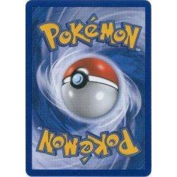 Pokemon Glitter, Hollow of Reverse Kaartje (Uit Het Zwarte Boek)