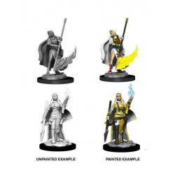 Pathfinder Battles Deep Cuts Unpainted Miniatures Female Human Oracle (Magic User) Case (6)