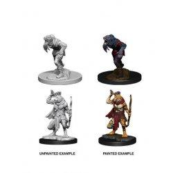 D&D Nolzur's Marvelous Miniatures Unpainted Miniatures Wererat & Weretiger Case (6)