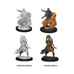 D&D Nolzur's Marvelous Miniatures Unpainted Miniatures Male Elf Sorcerer Case (6)