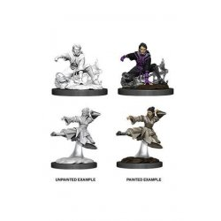D&D Nolzur's Marvelous Miniatures Unpainted Miniatures Female Human Monk