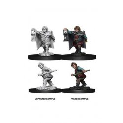 D&D Nolzur's Marvelous Miniatures Unpainted Miniatures Male Halfling Rogue