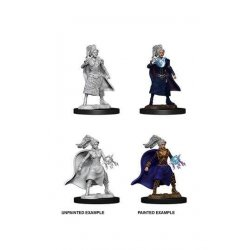 D&D Nolzur's Marvelous Miniatures Unpainted Miniatures Female Human Sorcerer