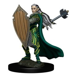 D&D Icons of the Realms Premium Miniature pre-painted Elf Paladin Female Case (6)