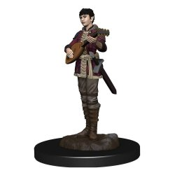 D&D Icons of the Realms Premium Miniature pre-painted Half-Elf Bard Female Case (6)