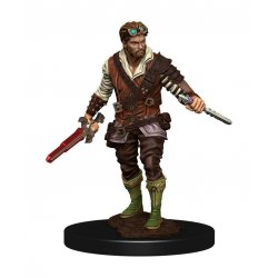 D&D Icons of the Realms Premium Miniature pre-painted Human Rogue Male Case (6)